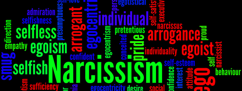 many words describing narissism