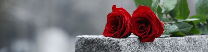 mom died red roses